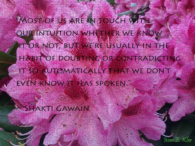 Intuition by Shakti Gawain small